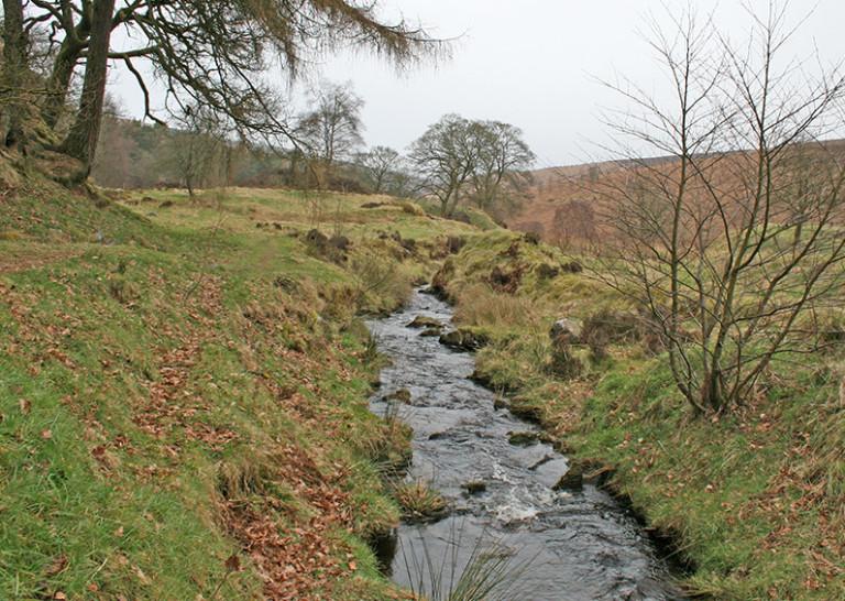 15: Errwood to Goytsclough