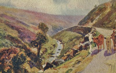 Shank's mare to Goyt's Bridge
