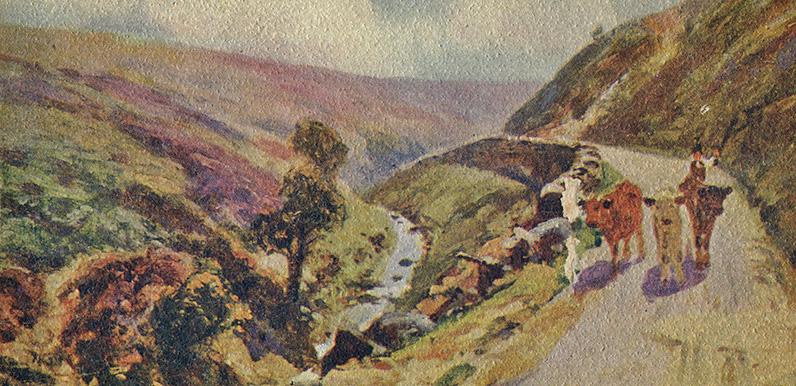Shank's mare to Goyt's Bridge