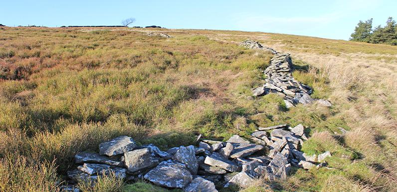 Deciphering the stone clues